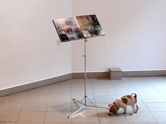 """Instaliacija """"Fotospalvos"""" Klaipėdos dailės parodų rūmuose, 2009"""